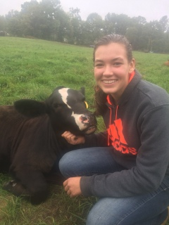 Evelyn, Simmental, with Katelyn